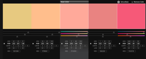 Color Palette for Infographic