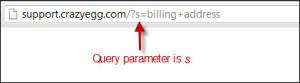 query-parameter