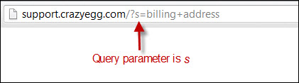 Finding Query Parameters for Site Search