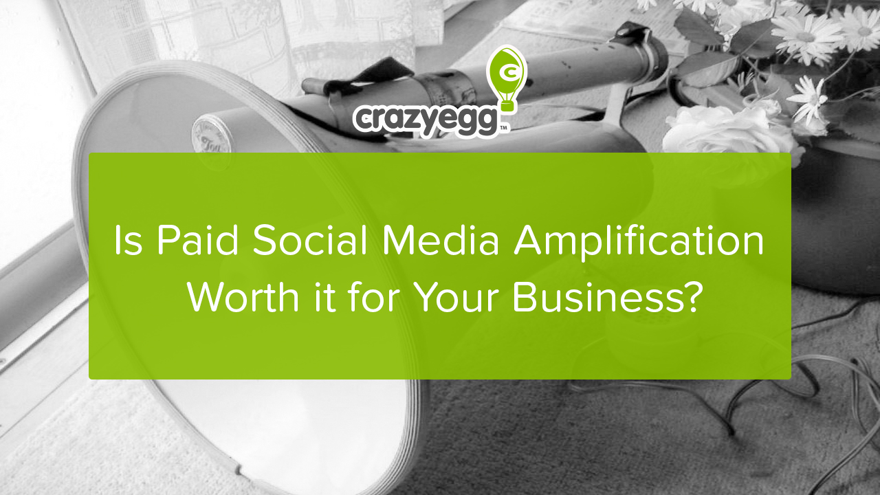 paid social media amplification