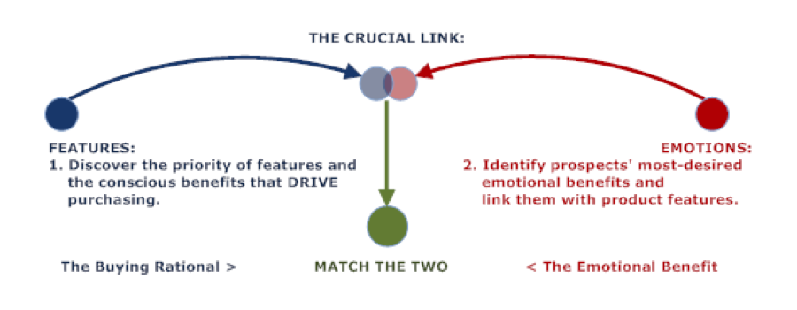 the-crucial-link
