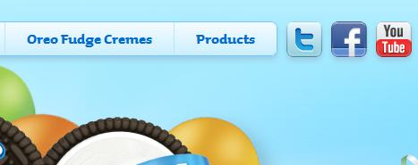 Social Media Profiles in Website Header Design