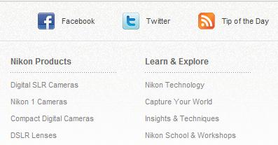 Social Media Profiles in Website Footer Design
