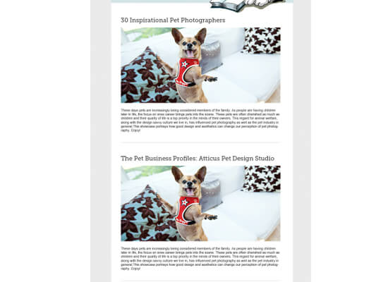 design-email-newsletter-template-5-duplicate