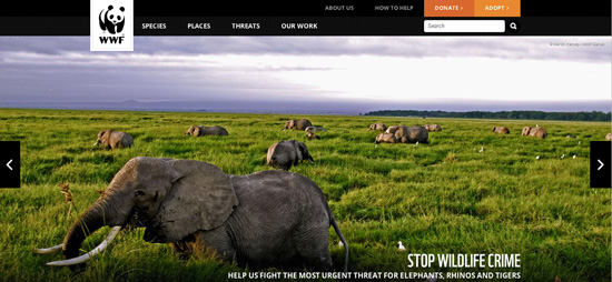 The natural beauty that is portrayed on the WWF homepage is more powerful than any words.