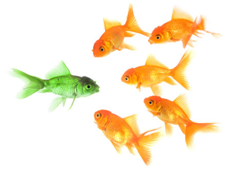 5 Practical CRO Predictions for 2015