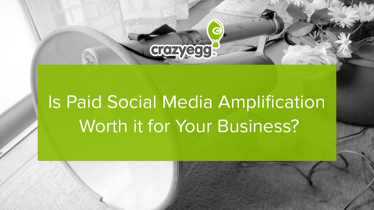 paid social media amplification
