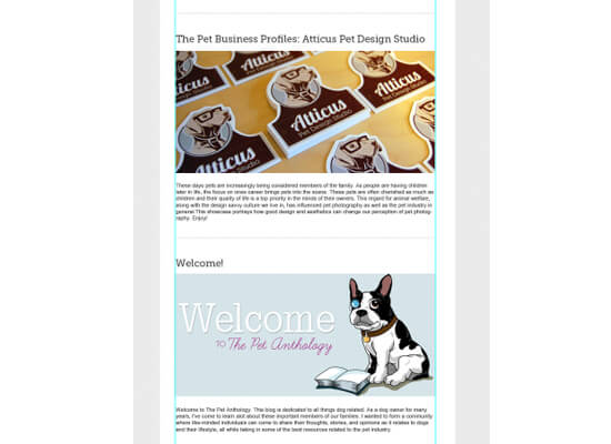 pet email newsletter