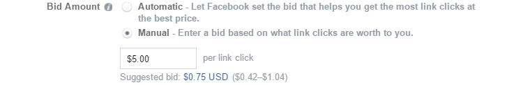 bid amount