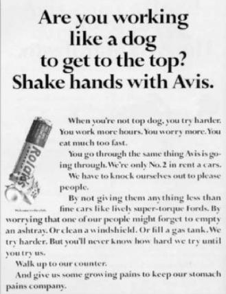 shake hands with avis