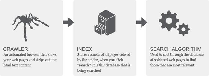 google crawl index search