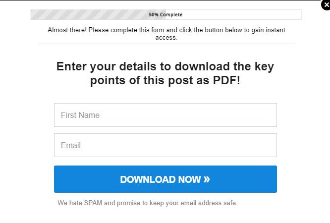 lead magnet ideas pdf example